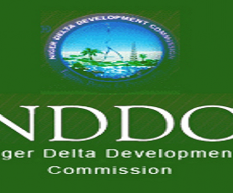 NDDC to partner Chinese firm on regional power project