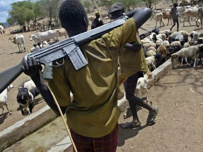 Fulani vigilante in Southeast? Inconceivable - vigilante, the region, the miyetti allah, the miyetti, the federal government, Southeast, Fulani