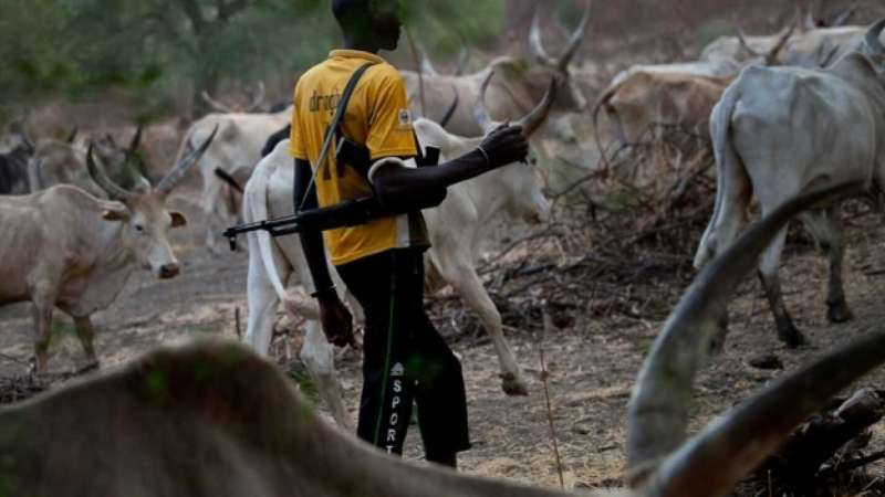 Yet another mass murder by cattle herders - Plateau State, Miyetti Allah group, Minister of Defence, mass murder, cattle herders