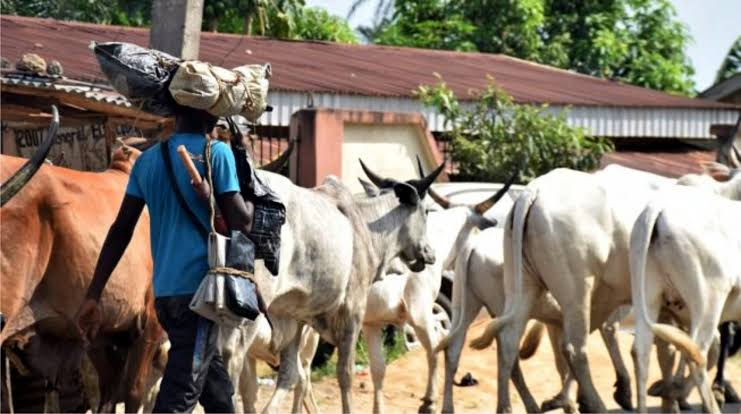 Fulani group accuses FG of imposing RUGA on Nigerians - the federal government, the country which, nigeria kacran, imposing, group, fulani group, Fulani