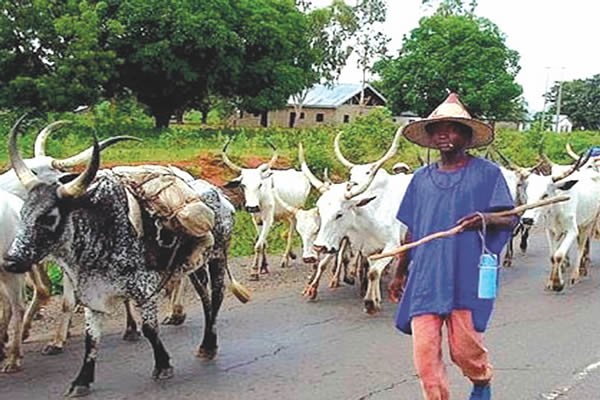 Abia monarch raises alarm over alleged herdsmen invasion of farmland - umuahia the, the federal government, over alleged, over, Monarch, for such settlement, abia