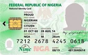 Nigerian nabbed for hacking US govt, issuing citizenship to family members, friends - Nigerian, his friends, hacking, family members, citizenship